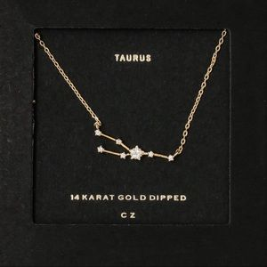 TAURUS   Zodiac Dainty Necklace 14k Gold Dipped